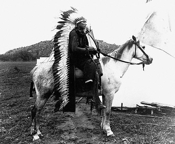 comanche culture essay The horse was a key element in comanche culture the people mastered their skills on horseback and gained a tremendous advantage in times of war.